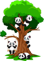 Cartoon baby panda playing on a tree