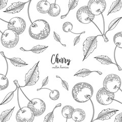 Hand drawn illustrations of cherries isolated on white background. Detailed frame for menu, promotion, advertising, greeting cards, wrapping paper, cosmetics packaging, labels, flyer.