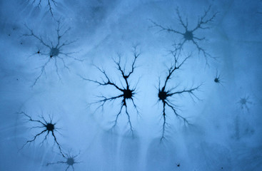 Close up, aerial view of the black ice crack, forming an unusual ornamental structure in melting ice of frozen lake. Unusual natural phenomenon. Cracks in blue ice reminiscent of the neural network.