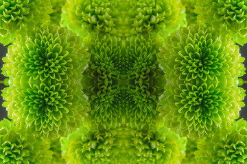 Nature Green Texture Symmetry