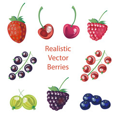 Vector set of realistic berries,can be used for patterns,textile,packaging design,banners and any creative design