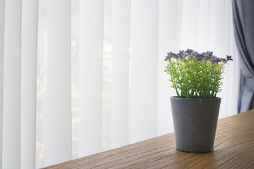 wood office table with violet  flower pot  on white curtain window background, view from front office table. view from front table.