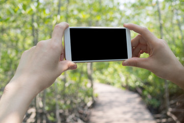 human hand hold black blank screen for text on smart phone, tablet, cellphone with walk way in garden.