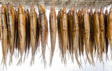 Räucherfisch Fisch geraucht geräuchert smoked fish Zuchtfisch