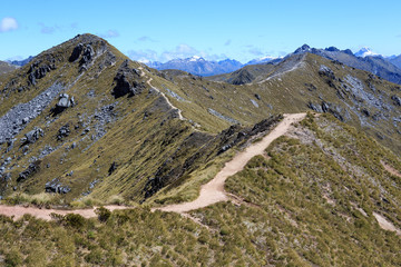 A view of the trail along the mountain ridge in New Zealand. The Kepler Track is a four day hike that is one of the Great Walks on the South Island of New Zealand.