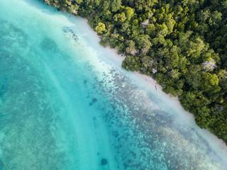 Aerial View of Jungle, Beach, and Reef in Raja Ampat