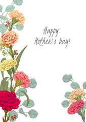 Template for Mother's Day: carnation, eucalyptus silver dollar, seeded: red, pink, yellow flowers, leaves, white background, hand draw, engraving vintage sketch style, botanical vector