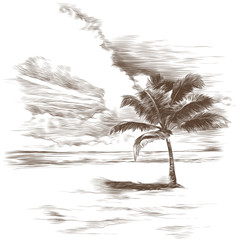 a sandy beach with a palm tree, sketch, vector graphics monochrome drawing