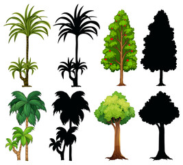 Four different plants with silhouette