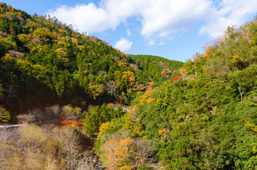 beautiful mountain view in autumn color season with blue sky in Arashiyama, Kyoyo, Hozukyo Station, Japan, , travel landscape and nature concept, soft focus