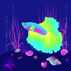 Vector realistic fish on the dark blue beckgound, element for design works