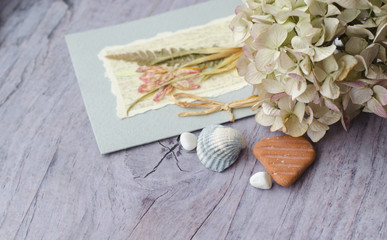 Composition from a card with a herbarium, shells, cotton lace and dry flowers. Vintage photo in delicate pastel silver pink tones.