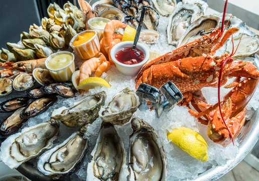 Seafood plate. Different molluscs and crustaceans lay over ice.