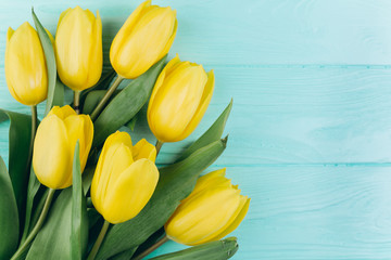 Yellow tulips on a blue wooden background, copy space and flat lay. Mother's Day concept.