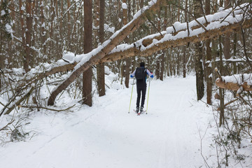 a man skier skating in a winter forest near trees