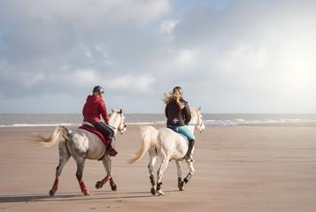 Papiers peints Equitation cavalières sur la plage