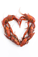 Boiled Crawfish in a Heart Shape on a White Background