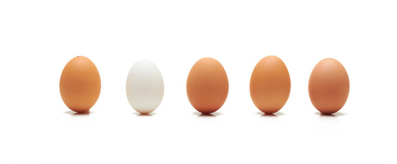 Single white egg among brown ones in a row