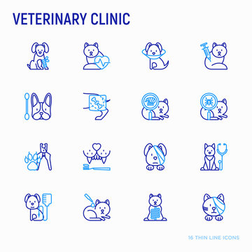 Veterinary clinic thin line icons set: broken leg, protective collar, injection, cardiology, cleaning of ears, teeth, shearing claws, bandage on eye, blood transfusion for dog. Vector illustration.