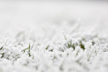 snow and ice covered grass, background