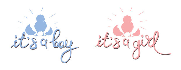 Newborn baby banner / Vector illustration, banner with chick