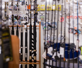 Picture of quality fishing rods for fishing