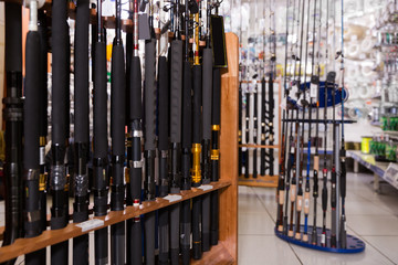 Picture of new excellent fishing rods