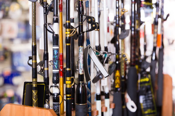 stand with diverse fishing rods in the sports shop