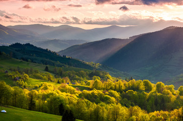 gorgeous mountainous countryside at sunset. beautiful landscape with purple sky over the forested rolling hills lit by sun rays.