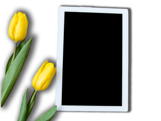 8 march greeting card with two yellow tulips and mockup