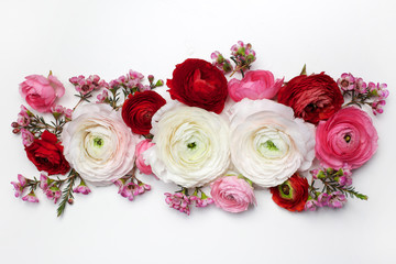 floral composition with a pink Ranunculus flowers on white background. Flat lay