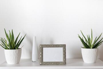 Bilderrahmen mit Topfpflanze und Vase