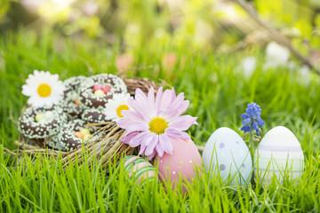 Süßes Osternest auf Blumenwiese