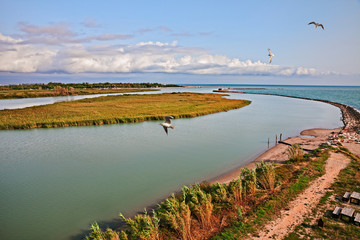 Rosolina, Veneto, Italy: landscape of the Adige river mouth in the nature reserve Po river delta park