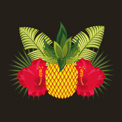 tropical pineapple red hibiscus flowers black background vector illustration