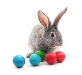 Rabbit and Easter eggs.
