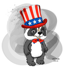 Cartoon raccoon  in old American hat drawing. A good character for children. Vector illustration