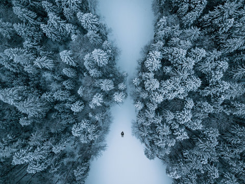 Aerial photograph of a Person lying on a frozen lake surrounded by a symmetric snowy pine forest at Eibsee, Germany