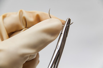 Holding a surgery needle (straight 1/2 circle) with needle holder and hand gloves.