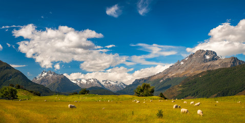Beautiful Pastoral Alpine Landscape in New Zealand with snow-capped mountains and meadows with sheep.