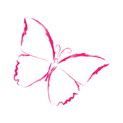 Butterfly pink, watercolor, on white background