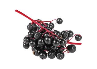 Black elderberry fresh fruit on a white background