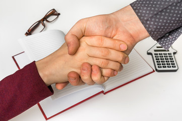 Business partnership and handshake after good deal