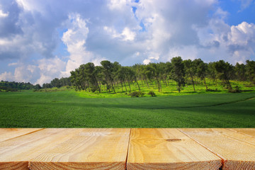 Empty rustic table in front of countryside background. product display and picnic concept.