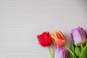 bouquet of colorful tulips on a light wooden background, a layout for your text