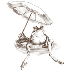 frog sitting on a jug and holding a beach umbrella in his paw, sketch vector graphics monochrome pattern
