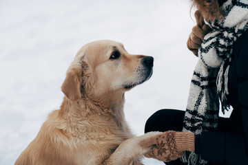 Photo of labrador giving paw to woman in black jacket in winter day