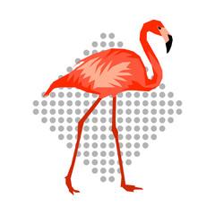 Design with flamingo. Tropical bright abstract bird