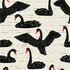 Seamless pattern with floating black swans. Hand drawn birds