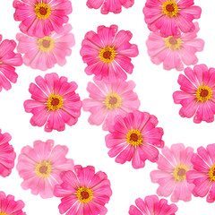 Beautiful floral background of pink tsiny